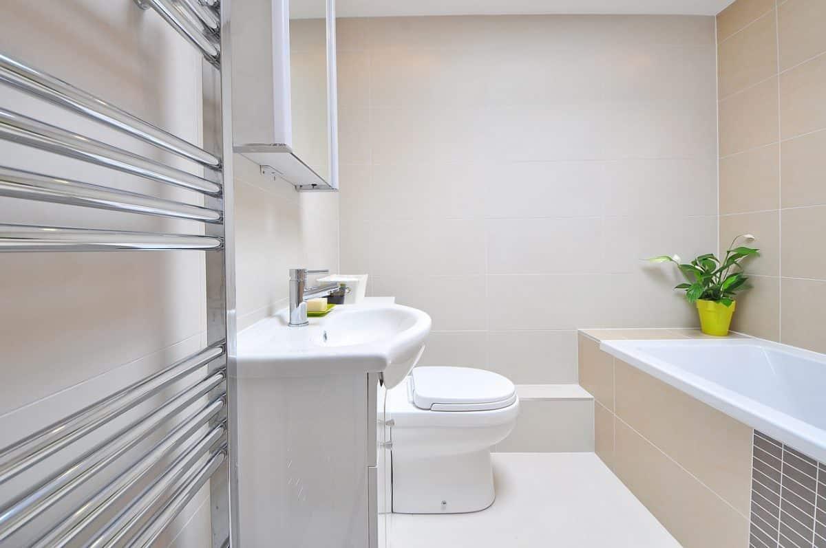 décoration-dune-salle-de-bain-douche-et-baignoire